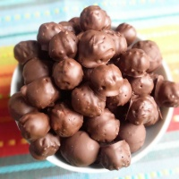 Maltesers maison